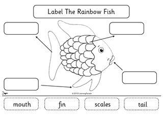 LabelRFish